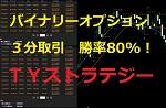 3分バイナリー勝率80パーセントの手法 【TYストラテジー】 レビュー 2016/11/04